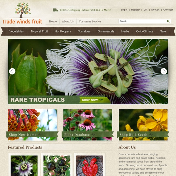 Trade Winds Fruit - Tropical Fruit and Plant Seeds
