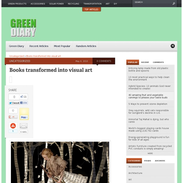 Books Transformed Into Visual Art - Green Diary