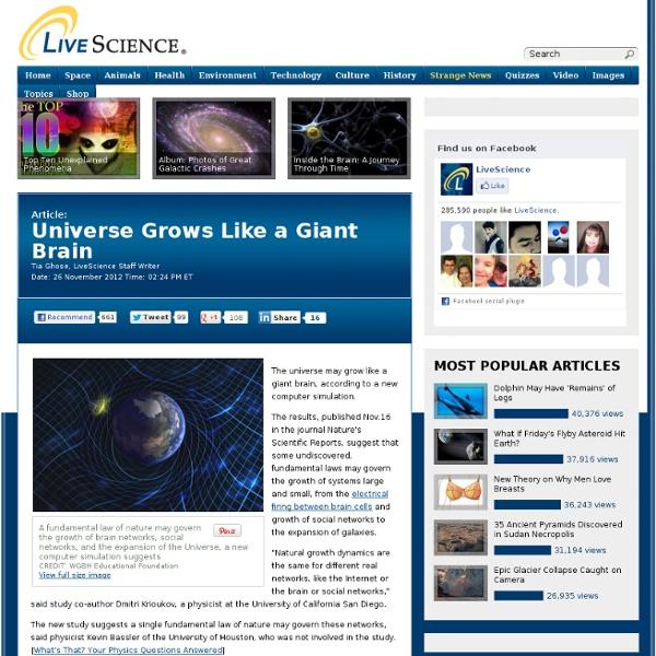 Universe Grows Like A giant Brain