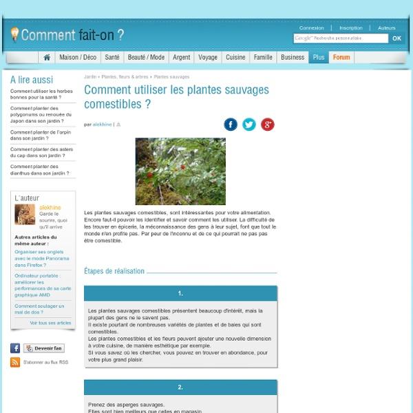 Comment utiliser les plantes sauvages comestibles ?