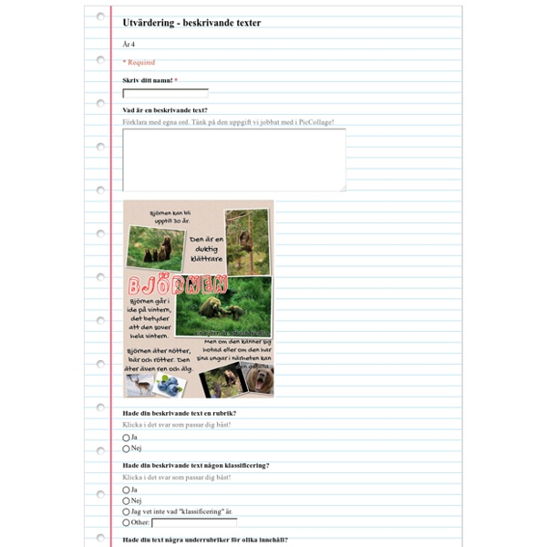 Utvärdering - beskrivande texter
