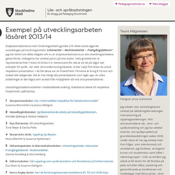 Exempel på utvecklingsarbeten läsåret 2013/14