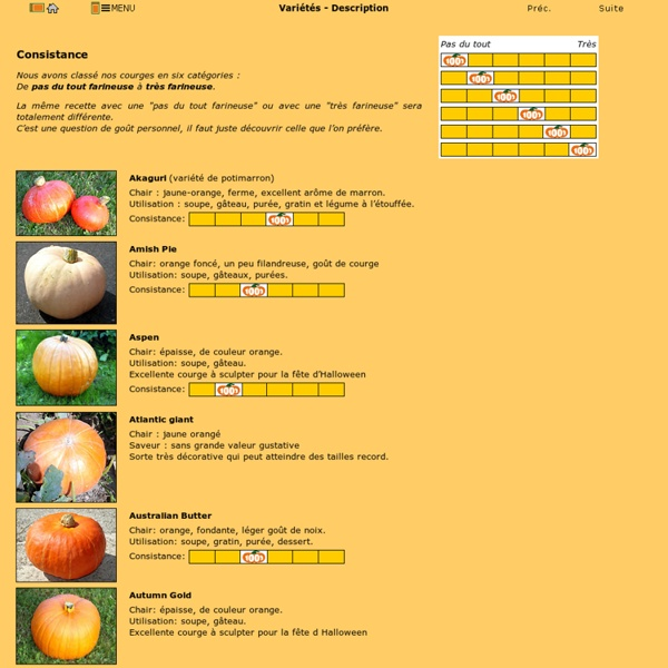 Les variétés de courges - Description