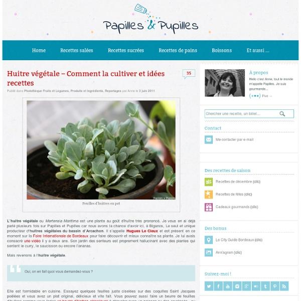 Huitre végétale – Comment la cultiver et idées recettes