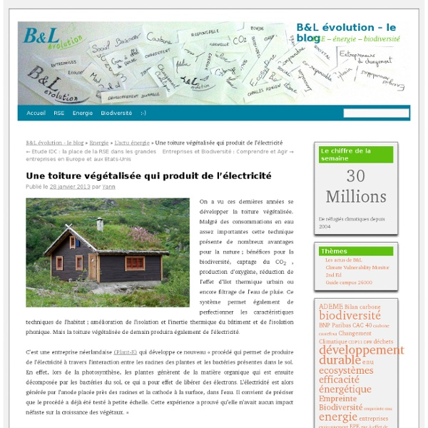 Une toiture végétalisée qui produit de l'électricité - B&L évolutionB&L évolution – le blog