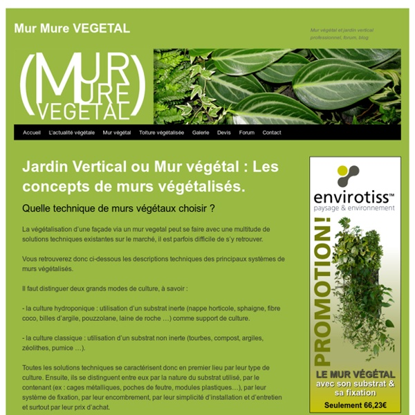 Jardin Vertical ou Mur végétal : Les concepts de murs végétalisés.