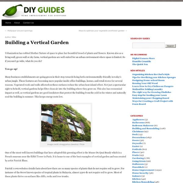 How To Build A Vertical Garden & DIY Guides