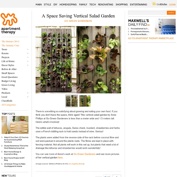 A Space Saving Vertical Salad Garden Go Green Gardeners
