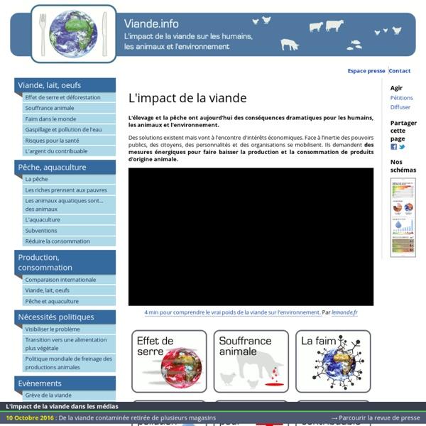 Viande : impact sur l'environnement, la santé et les animaux