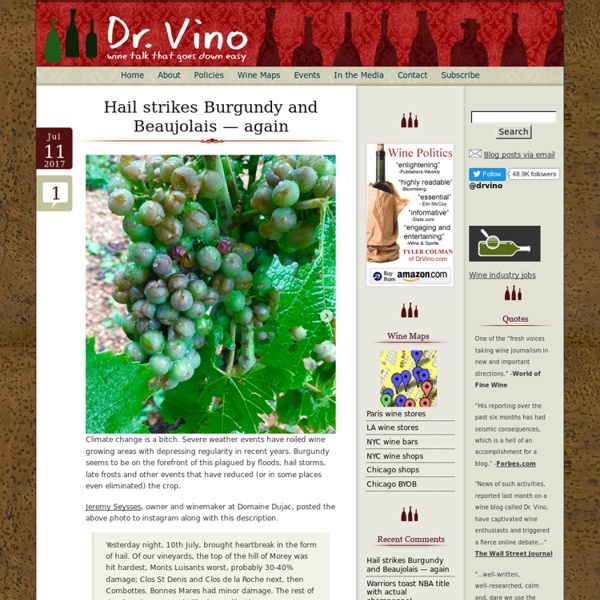 Dr Vino's wine blog » wine talk that goes down easy Dr Vino's wine blog