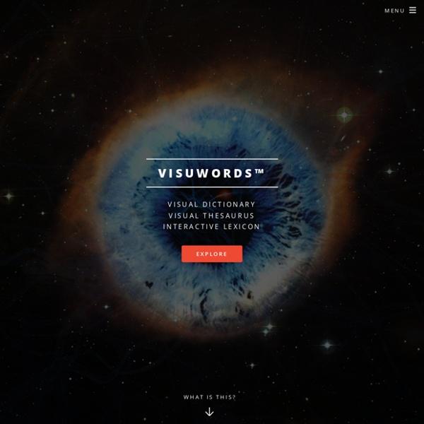 Visual Dictionary, Visual Thesaurus