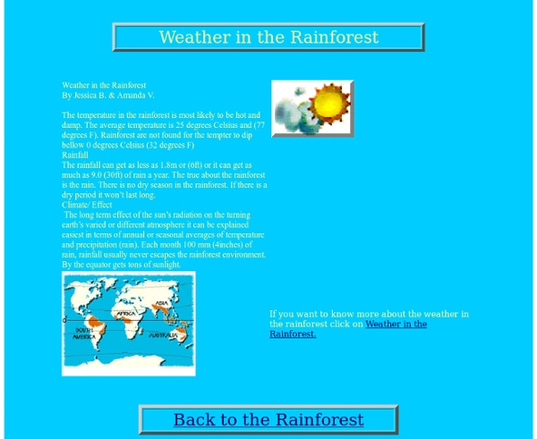 Weather in the rainforest