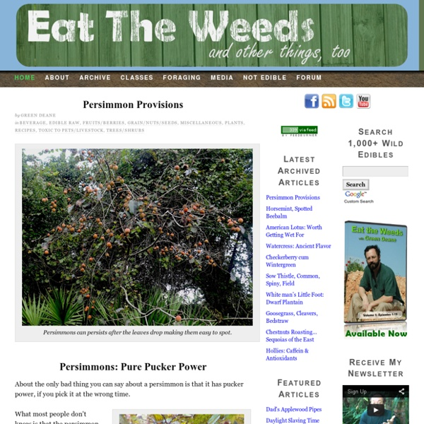 Eat The Weeds by Green Deane, the most watched forager in the world