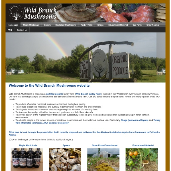 Welcome to the Wild Branch Mushrooms website.