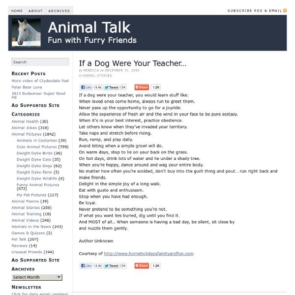 If a Dog Were Your Teacher