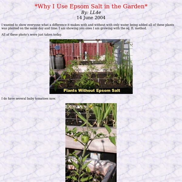 Why i use epsom salt in the garden pearltrees for How to use epsom salt in garden