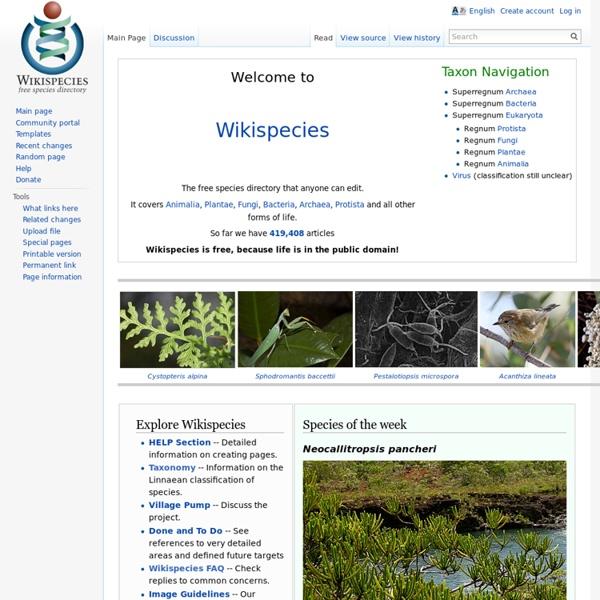 Wikispecies, free species directory