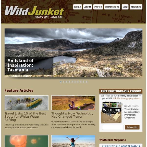 Wild Junket