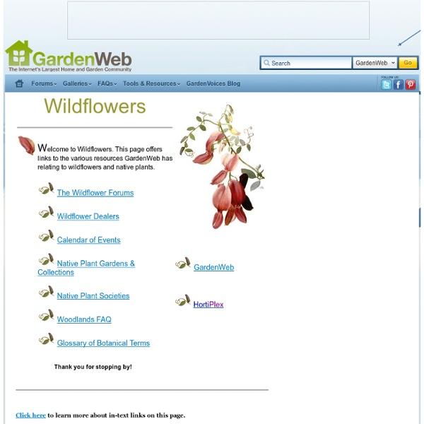 Wildflowers: GardenWeb Index