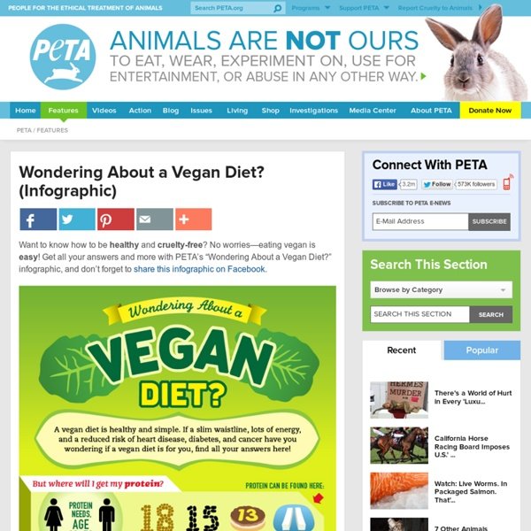 Wondering About a Vegan Diet? (Infographic)