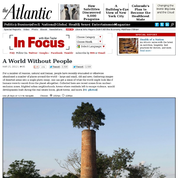 A World Without People - In Focus