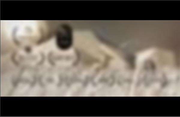 WWF Hungary - Paper World