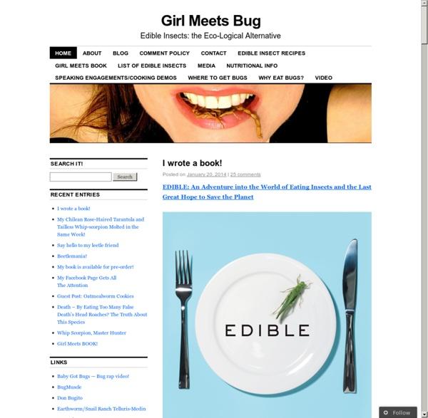 Www.girlmeetsbug.com