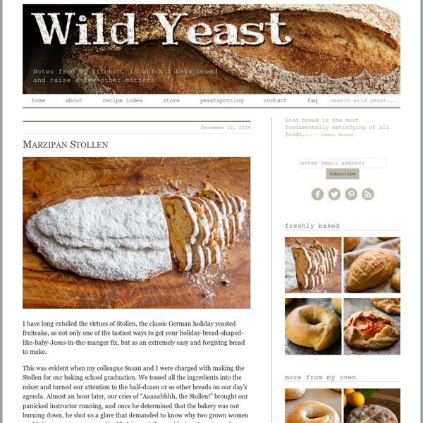 Wild Yeast – Notes from my kitchen, in which I bake bread and raise a few other matters