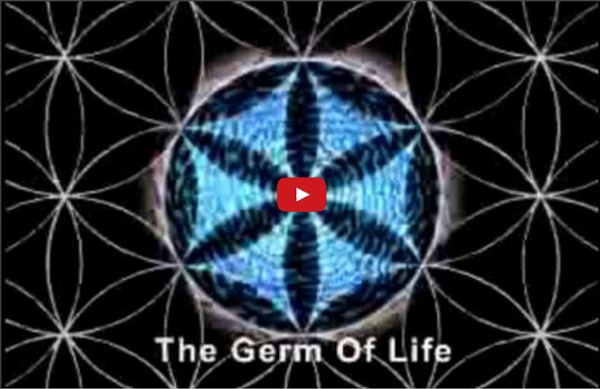 Test Yourself The tree of life Vesica piscis Secret Geometry