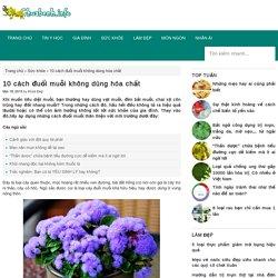10 cách đuổi muỗi không dùng hóa chất
