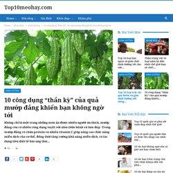 """10 công dụng """"thần kỳ"""" của quả mướp đắng khiến bạn không ngờ tới - Top10meohay.com"""