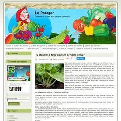 10 légumes à faire pousser pendant l'hiver