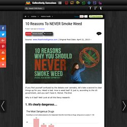 10 Reasons To NEVER Smoke Weed