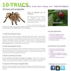 10 trucs anti-araignées