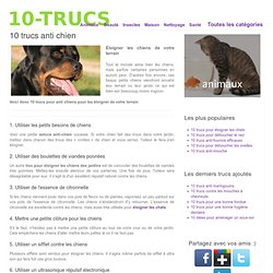 10 trucs anti chien