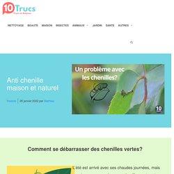 10 trucs contre les chenilles
