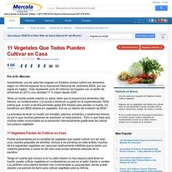 11 vegetales faciles de cultivar