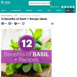 12 Benefits of Basil + Recipes