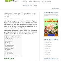 #12 Cây Thuốc Nam Giải Độc Gan, Thanh Nhiệt Cơ Thể