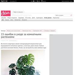 15 ошибок в уходе за комнатными растениями - Дизайн интерьера - интерьер дома, фен-шуй, дома знаменитостей, ремонт - IVONA - bigmir)net - IVONA bigmir)net