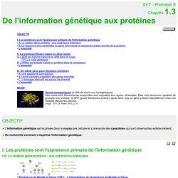 bilan cours:de l'information génétique aux protéines