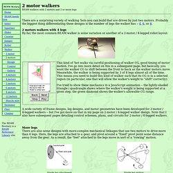 2-Motor Walkers