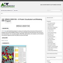 BRAGI 20091106 - A Protein Visualization and Modeling Program