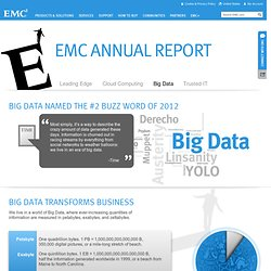 2012 Annual Report - Big Data Share of Voice