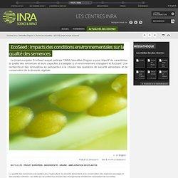 INRA 22/02/13 EcoSeed : Impacts des conditions environnementales sur la qualité des semences