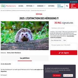 2025 : l'extinction des hérissons ?!