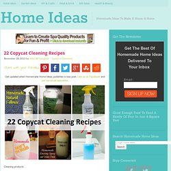 22 Copycat Cleaning Recipes