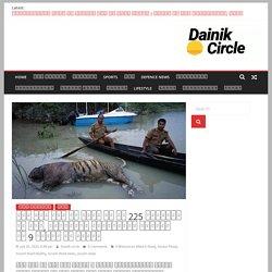 असम में बाढ़ के कारण अब तक 225 जानवरों की मौत, काजीरंगा राष्ट्रीय उद्यान के 9 गैंडे भी शामिल - Dainik Circle