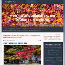 ทัวร์ญี่ปุ่นใบไม้เปลี่ยนสี 2559 (2016) นิกโก้ มินาคามิ 6วัน 4คืน บินTG