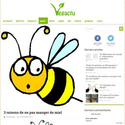 Plaidoyer pour les abeilles
